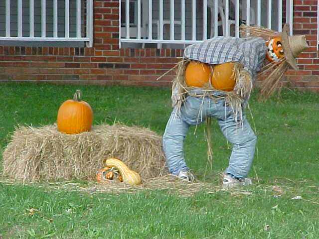 Great Funny Halloween Decorations 640 x 480 · 44 kB · jpeg